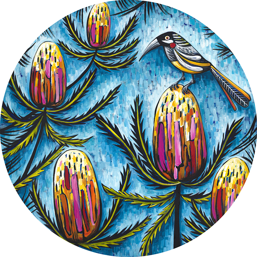 red wattle bird plaque e
